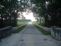 road-from-gibbs-bridge