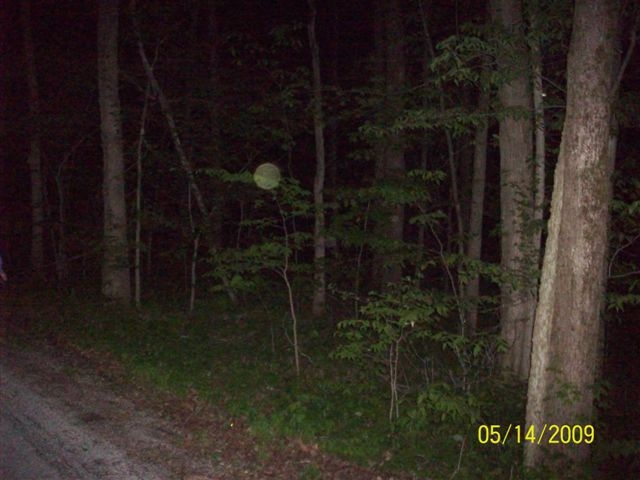 Dust Orbs at Goll Woods