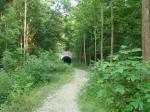 Moonville Tunnel 033