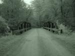 Moonville Tunnel 152